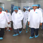 FG is promoting growth of local pharmaceutical industry – Vanguard